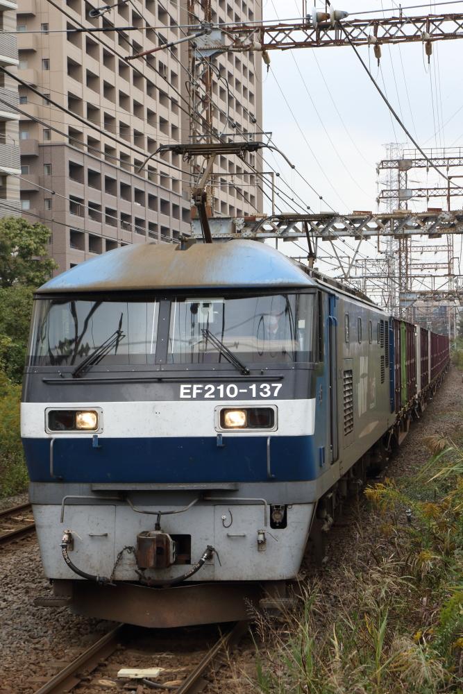 f:id:kawaturu:20201103212029j:plain