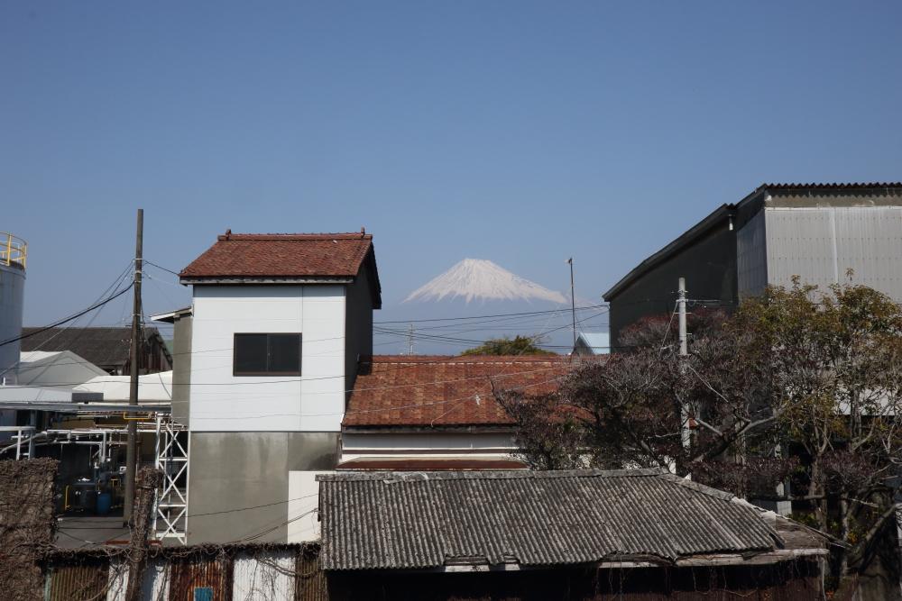 f:id:kawaturu:20210328190131j:plain