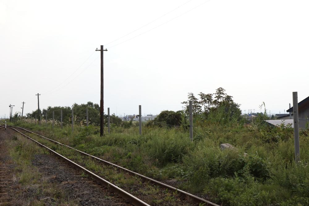 f:id:kawaturu:20210526210427j:plain