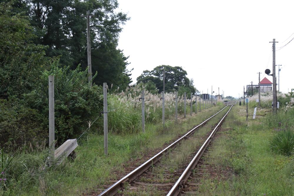 f:id:kawaturu:20210526212033j:plain