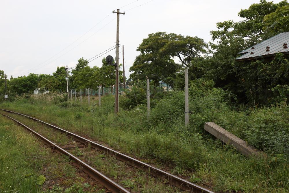 f:id:kawaturu:20210526212121j:plain