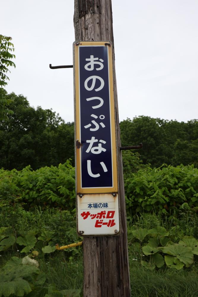 f:id:kawaturu:20210705213743j:plain