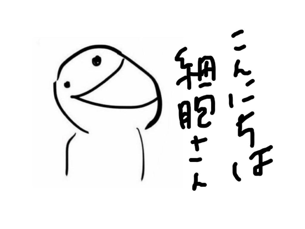 f:id:kawauchinoago:20171124113005j:image