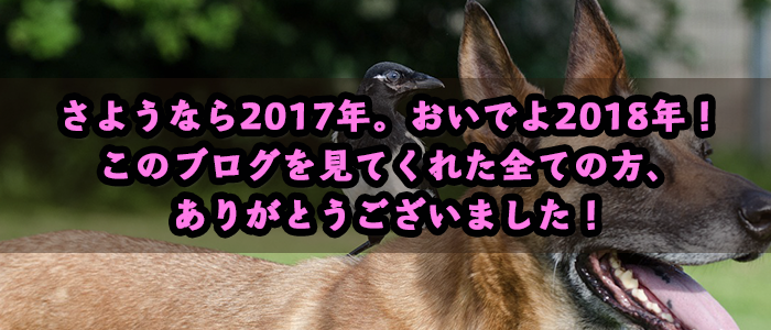 f:id:kawauso-girl:20171231214542p:plain