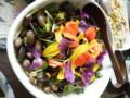 ヒマワリ、コモンマロウ、ナスタチウムで彩り