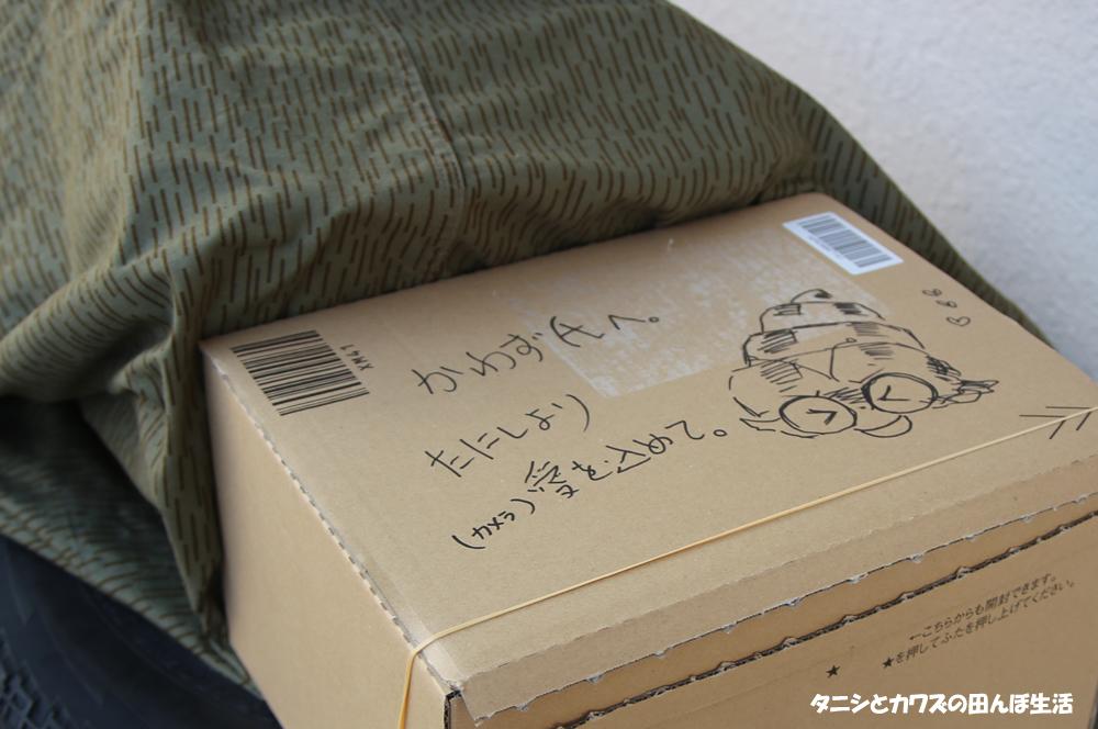 f:id:kawazutanishi:20210224222700j:plain
