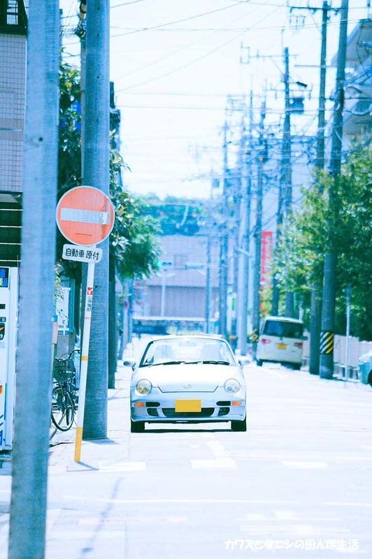 f:id:kawazutanishi:20210225220246j:plain