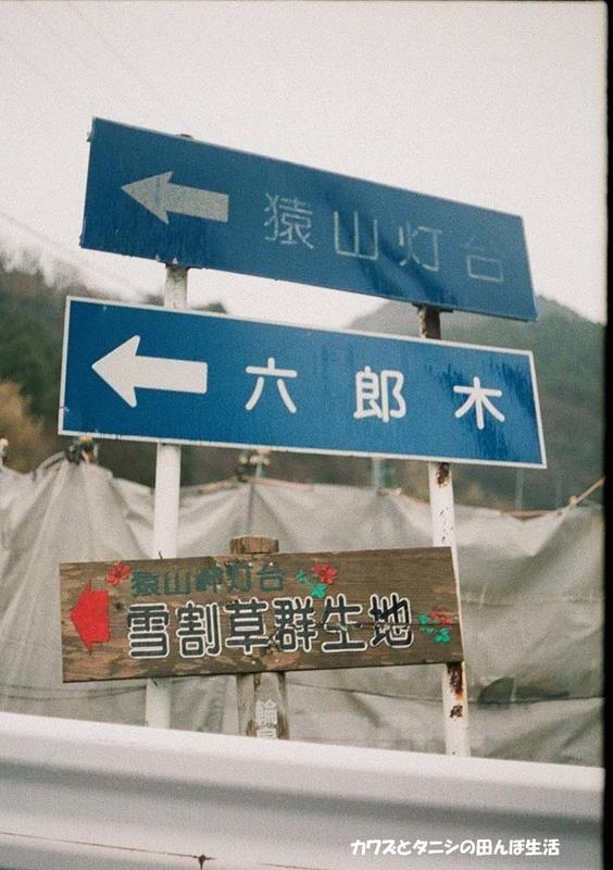 f:id:kawazutanishi:20210405230546j:plain