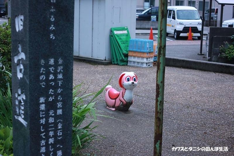 f:id:kawazutanishi:20210715213447j:plain