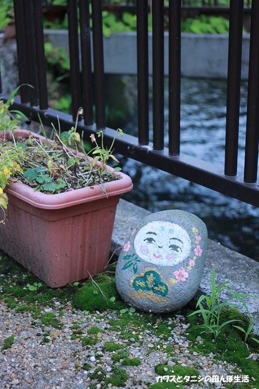f:id:kawazutanishi:20210715213503j:plain