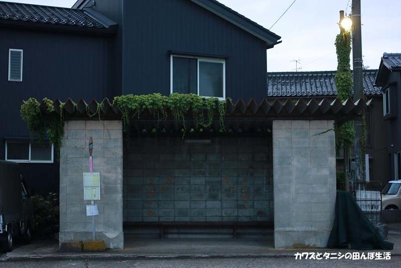 f:id:kawazutanishi:20210715213556j:plain