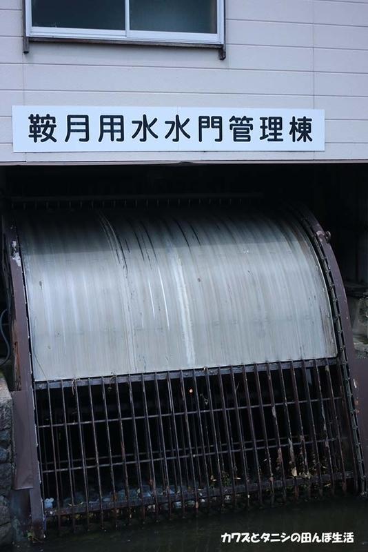 f:id:kawazutanishi:20210715213607j:plain