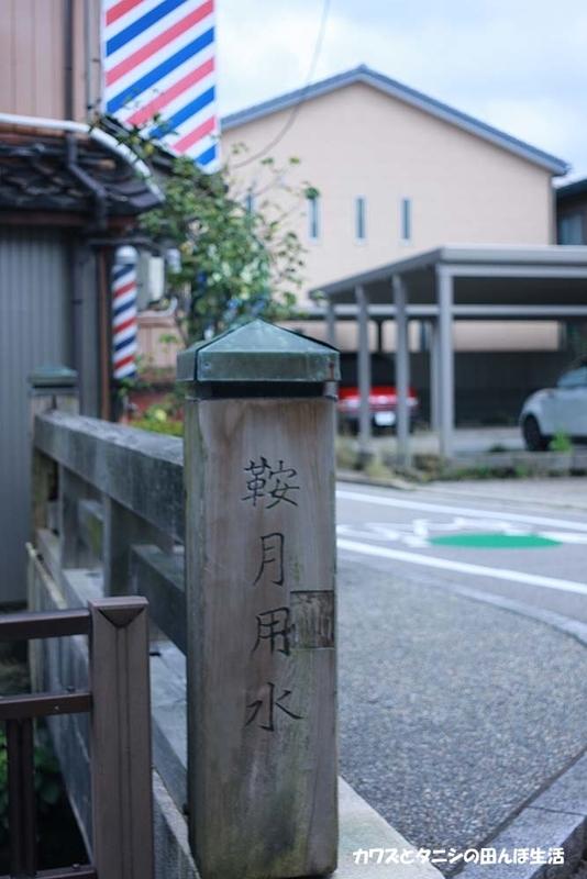 f:id:kawazutanishi:20210715213618j:plain