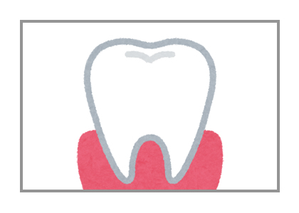 歯と歯ぐきのイラスト