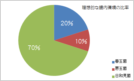 腸内環境の理想的な比率のグラフ