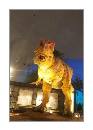 恐竜博物館のティラノサウルス