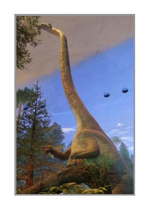 恐竜博物館のくびなが恐竜
