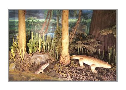 恐竜博物館の水辺の動物