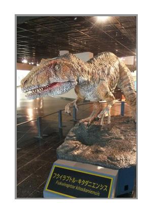 恐竜博物館のフクイラプトル