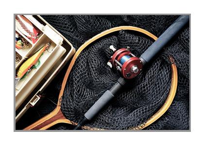 釣り竿の画像