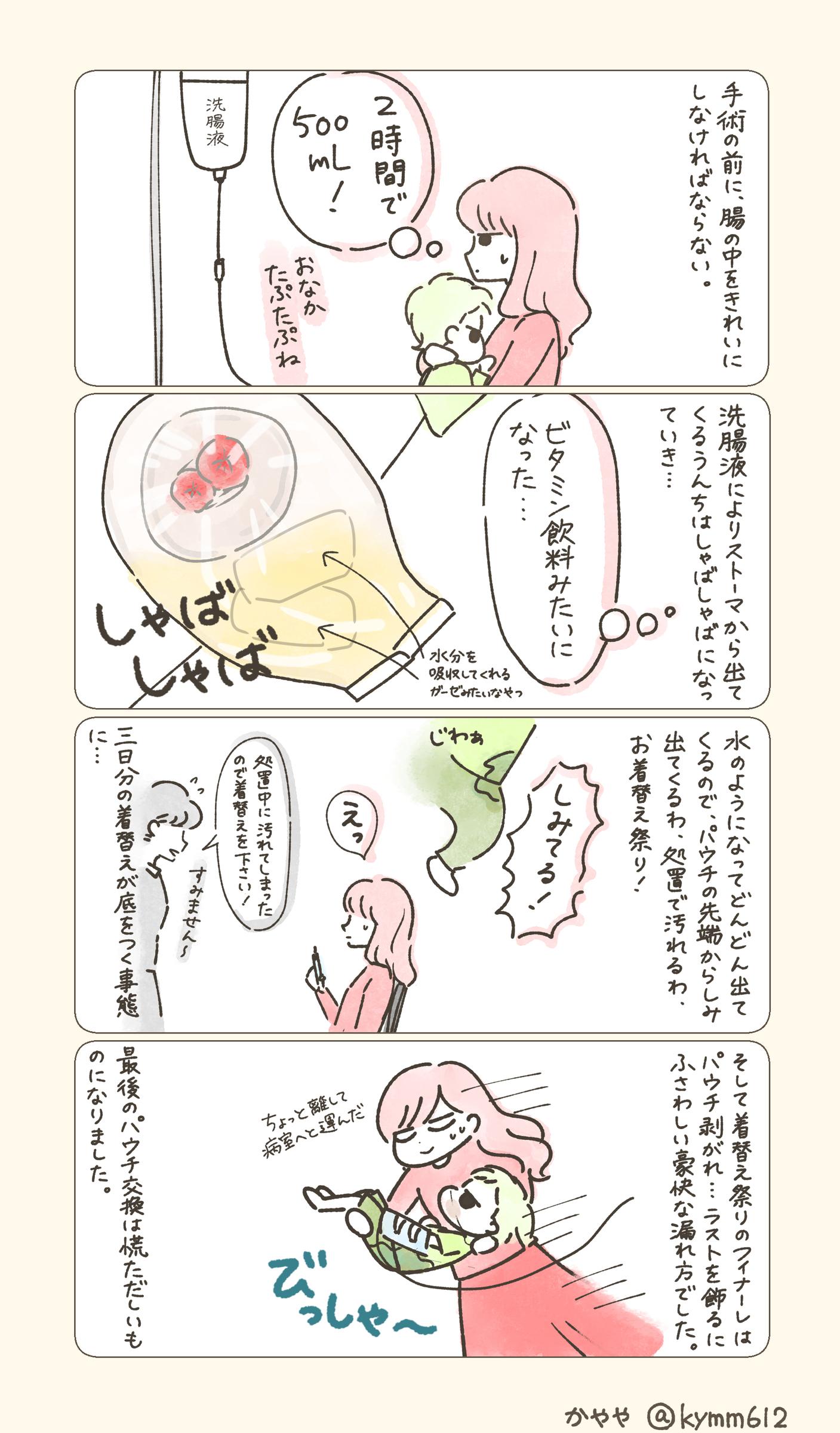 f:id:kayarimo:20190628131210j:plain