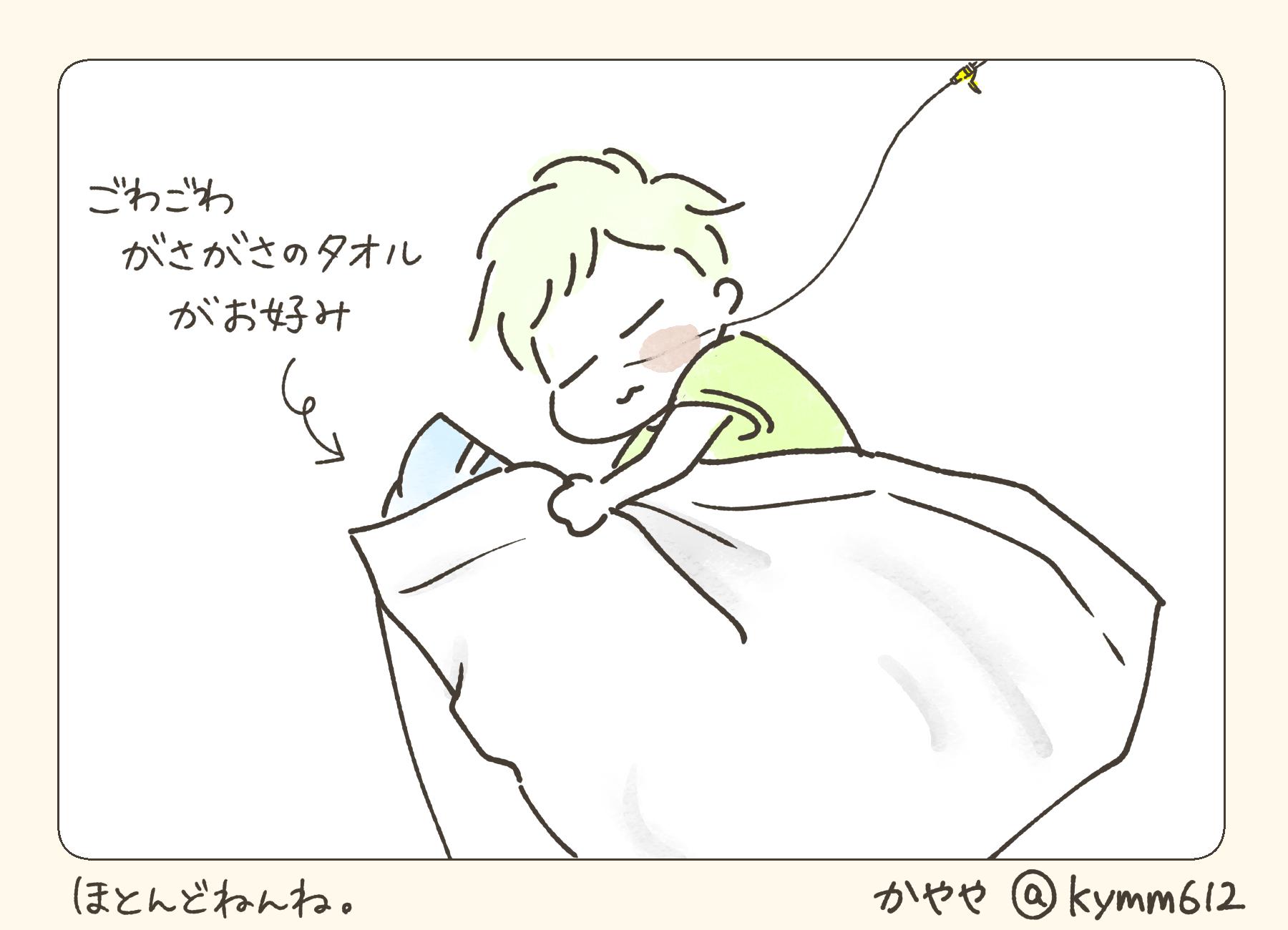 f:id:kayarimo:20190628131246j:plain