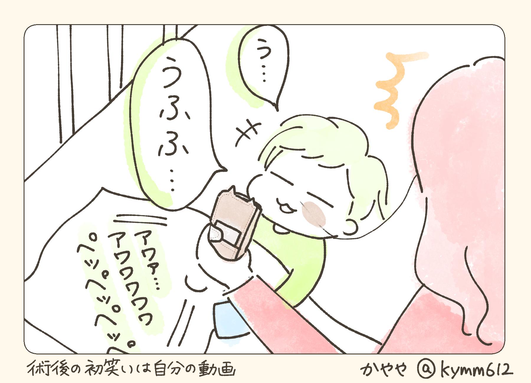 f:id:kayarimo:20190628131314j:plain