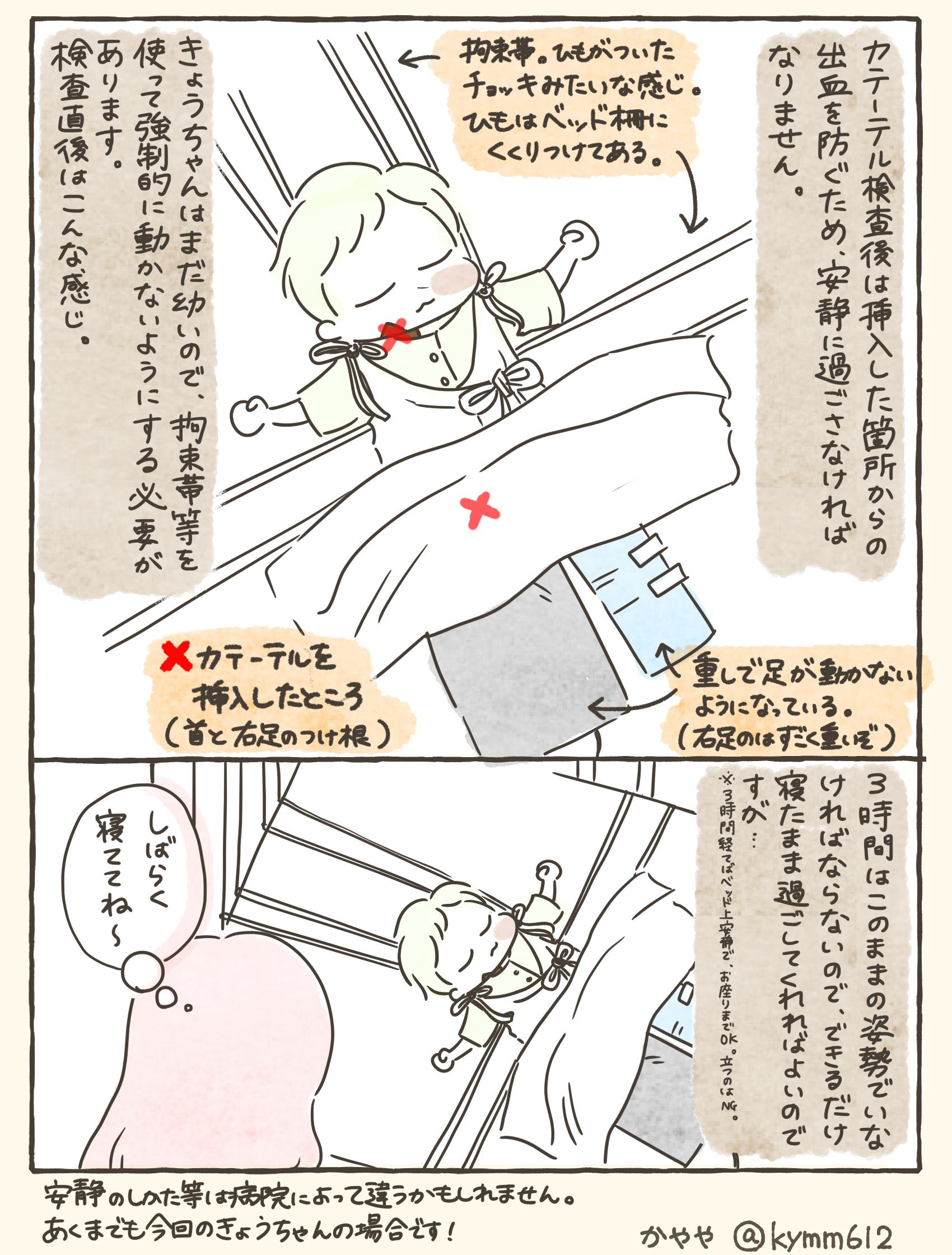 f:id:kayarimo:20200203154719j:plain
