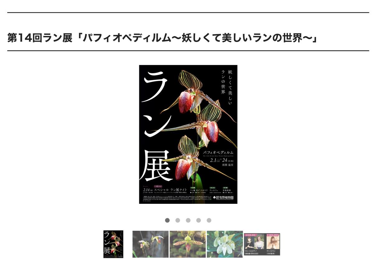 f:id:kayoko_cafe:20200222223748j:plain