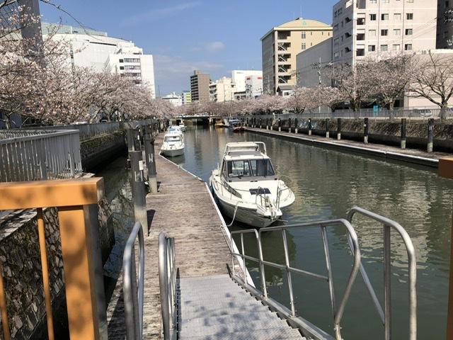 f:id:kayoko_cafe:20210327112927j:plain