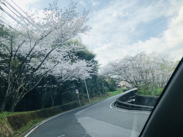 f:id:kayoko_cafe:20210327215756j:plain
