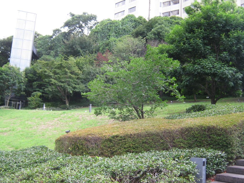 f:id:kaz-mt-wisteria:20170917150858j:plain