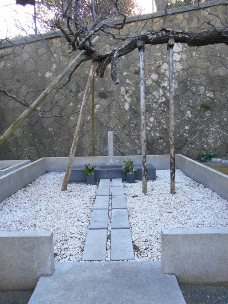 f:id:kaz-mt-wisteria:20180110231634j:plain