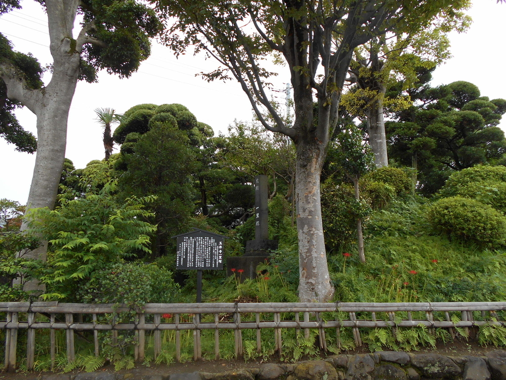 f:id:kaz-mt-wisteria:20180930150151j:plain