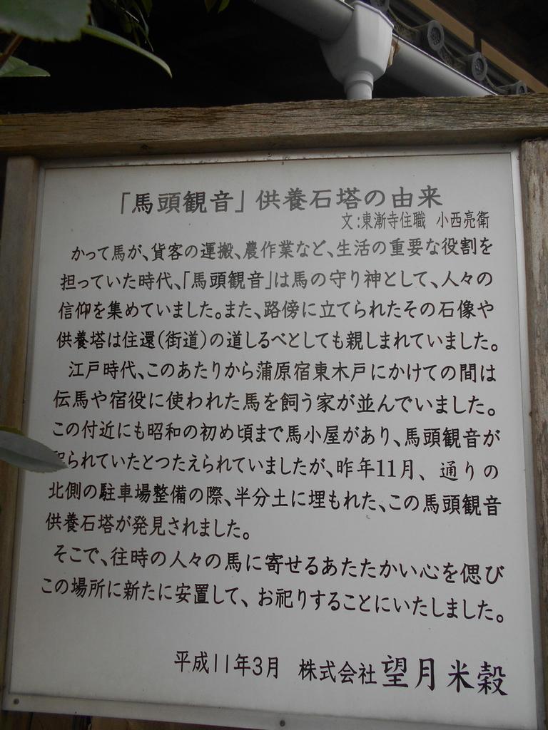f:id:kaz-mt-wisteria:20190219001519j:plain