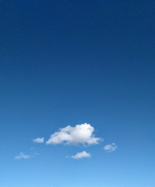 f:id:kaz-mt-wisteria:20200227141049j:image
