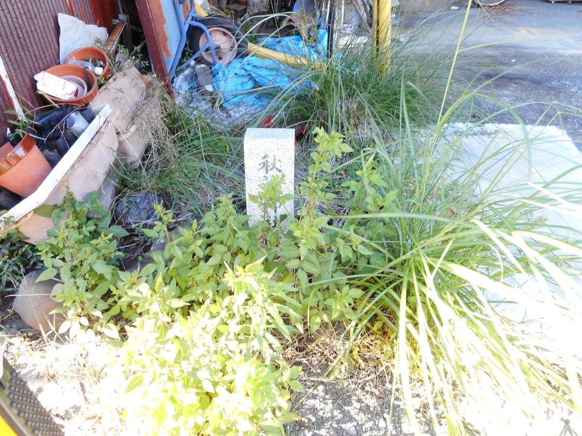 f:id:kaz-mt-wisteria:20201115001422j:plain