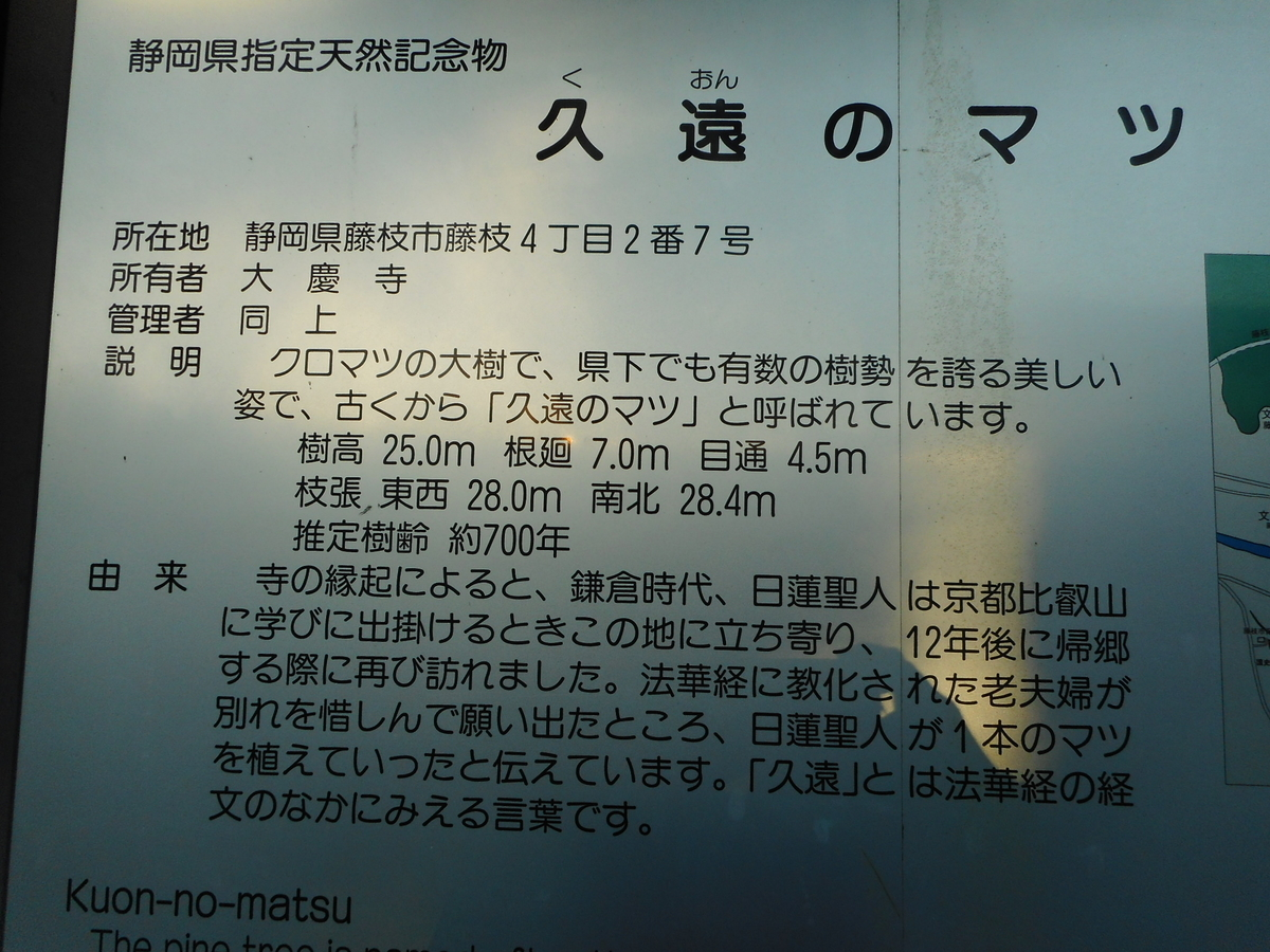f:id:kaz-mt-wisteria:20201116231008j:plain