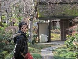 f:id:kazaguruma-87:20101230133848j:image
