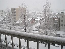 f:id:kazaguruma-87:20110101143259j:image