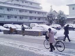 f:id:kazaguruma-87:20110129190339j:image