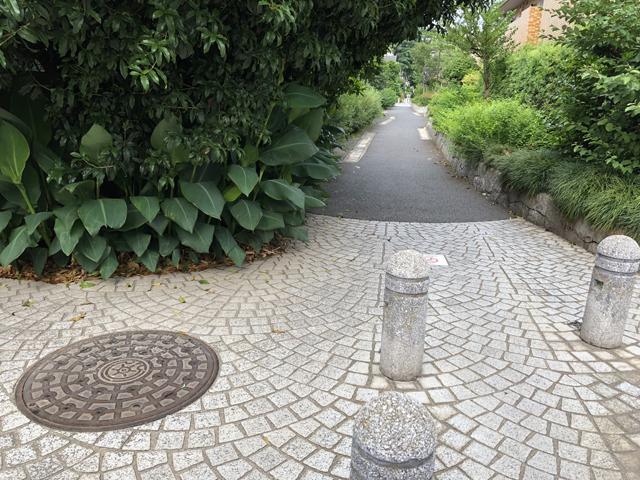 桃園川緑道2