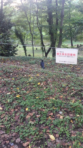 f:id:kazamakun1214:20160910201247j:image