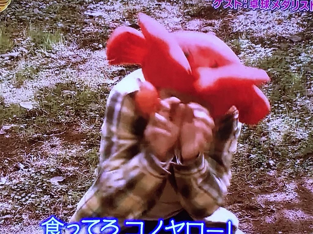 f:id:kazanehime:20161108091858j:image