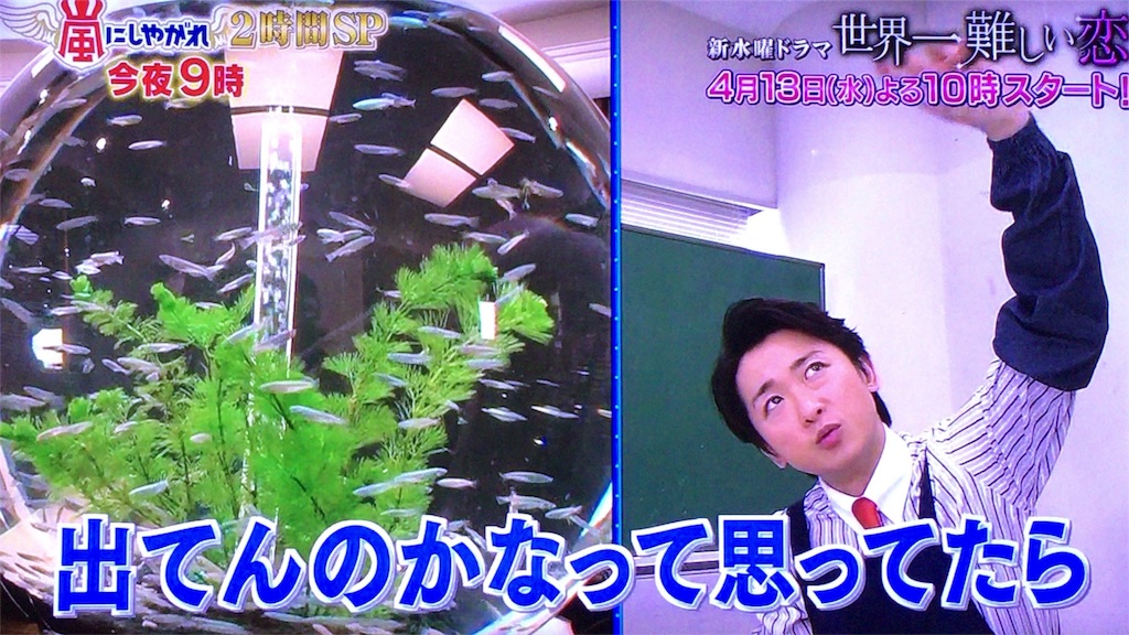 f:id:kazanehime:20170528152855j:image