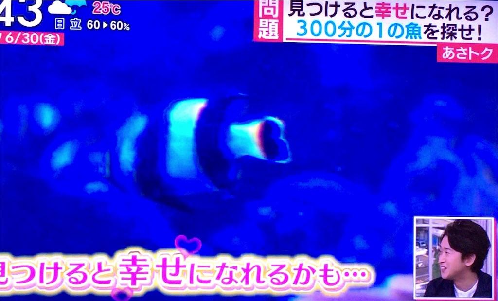 f:id:kazanehime:20170811093316j:image
