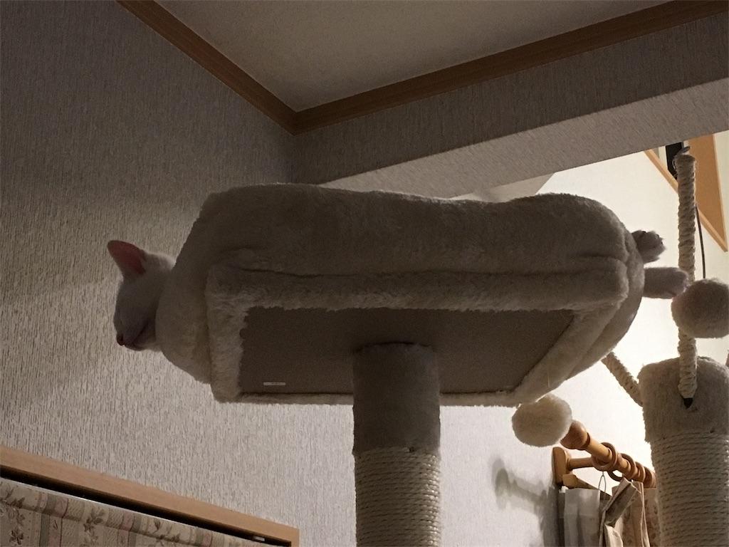 f:id:kazanehime:20171011145951j:image