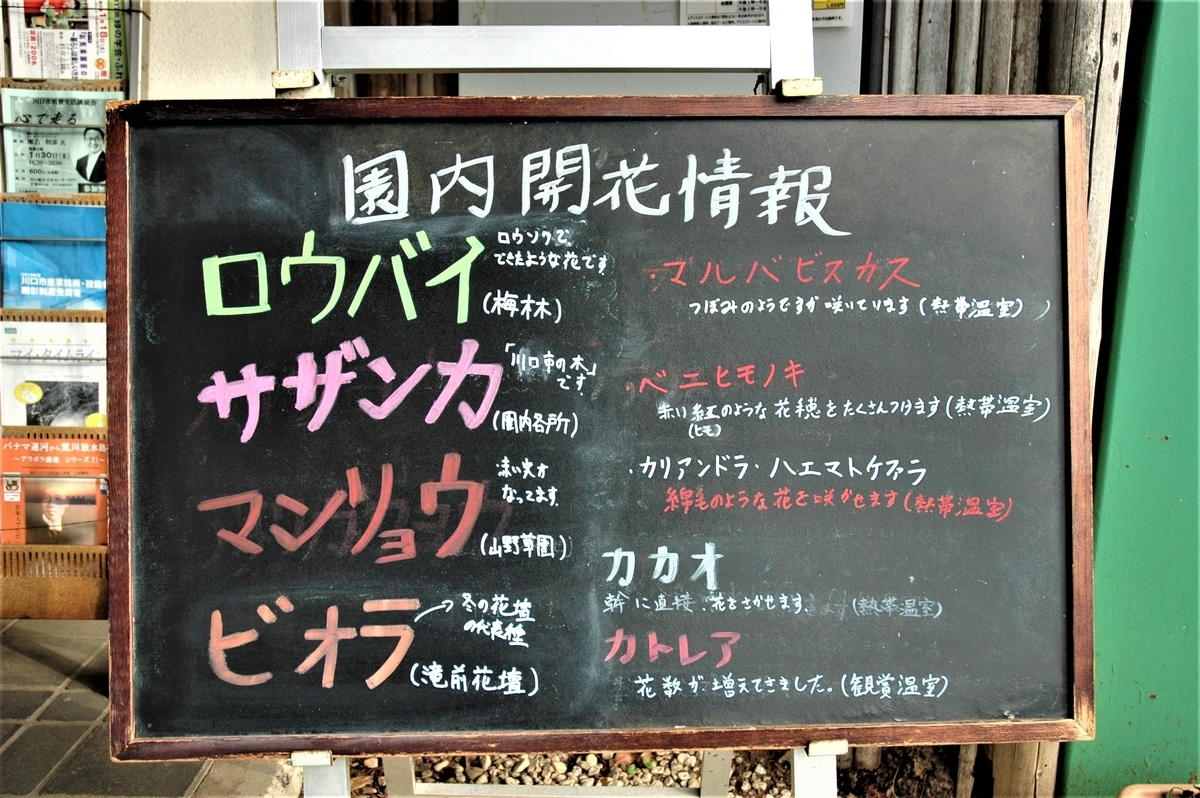 f:id:kaze_no_katami:20200121072947j:plain