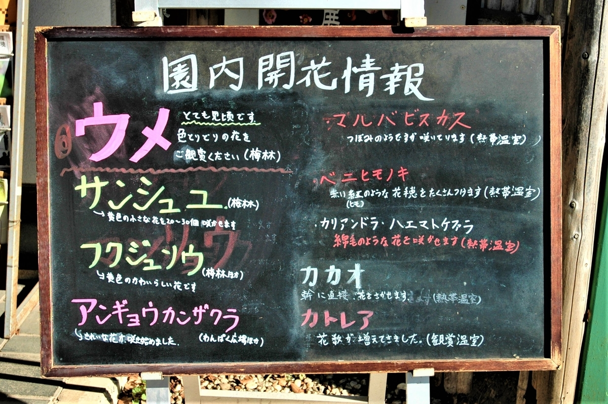 f:id:kaze_no_katami:20200227091534j:plain