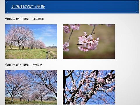 f:id:kaze_no_katami:20200310180447j:plain